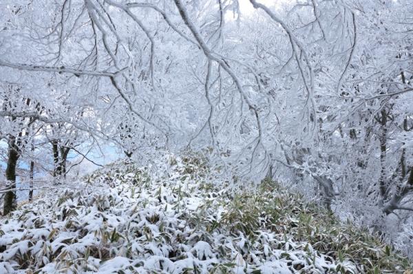 3中津明神山201220