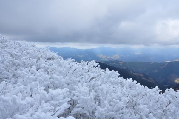 8中津明神山201220