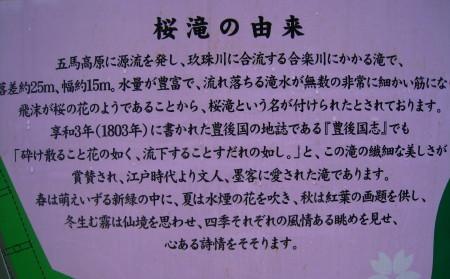 IMG_3914_1.jpg